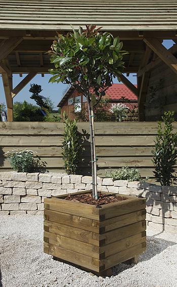 menuiserie bertin jardini re mibois autoclave 60cmx60cmx53cm sur menuiserie bertin. Black Bedroom Furniture Sets. Home Design Ideas