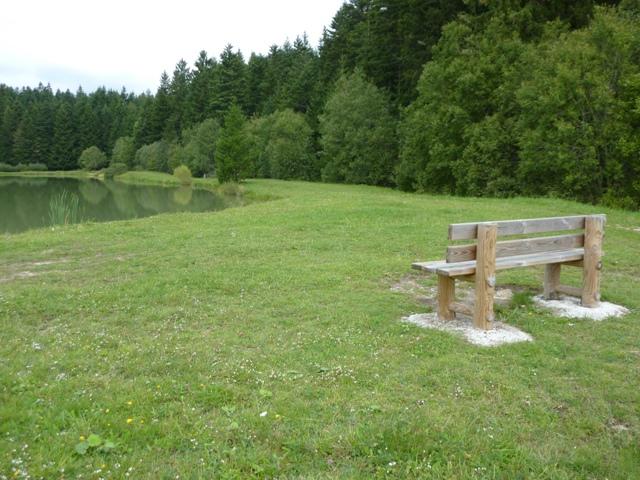 Banc Champêtre avec dossier ~ Rondin Bois Autoclave