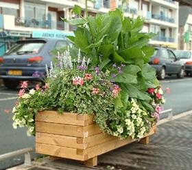 bac-a-fleurs-mibois
