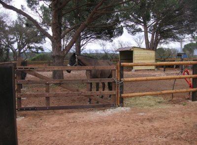 Portail Equestre