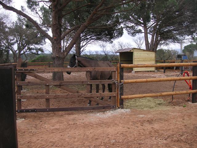 Portail equestre menuiserie bertin for Portail coulissant hauteur 1m40